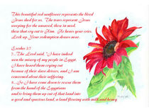 Red Sunflower with scripture and verse by Linda Ginn