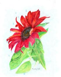 Red Sunflower von Linda Ginn