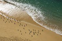Strand und Meer von Stephan Zaun