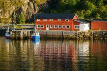 Port in Lofoten by Maciej Markiewicz