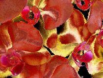 Sag es mit Blumen_1 von Heidrun Carola Herrmann