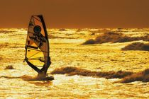 Surfer von Stephan Zaun