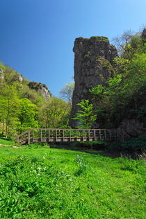 Ilam Rock and Ilam Rock Bridge von Rod Johnson