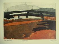 Bridges over Sava river by Ivana Vasic Nikolic