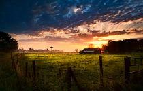 Charming farmland by Olha Rohulya