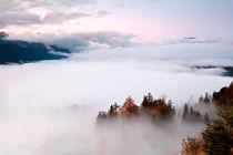 Sea of fog von Olha Rohulya