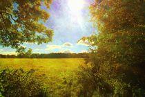 Sun Flare. by Heather Goodwin