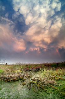 Mammatus clouds by Olha Rohulya