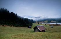 Misty alpine morning  von Olha Rohulya