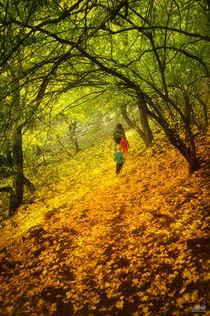 Nature von Szantai Istvan