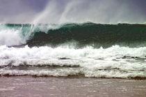 Surf Wave 1 von Roger Butler