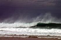 Surf Wave 2 von Roger Butler