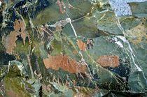 Verzauberte Waldlandschaft im Stein von Martin Pepper