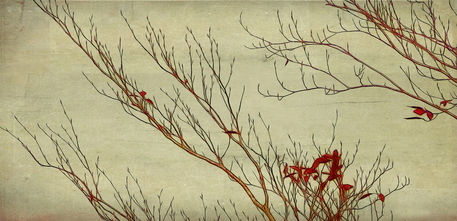 Branches3-2