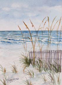 Anna Maria Island, Bradenton Beach by Derek McCrea