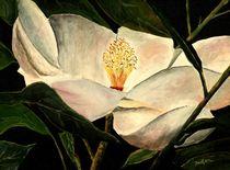 Magnolia flower by Derek McCrea