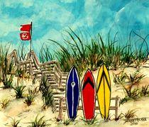 Surf at Your Own Risk by Derek McCrea