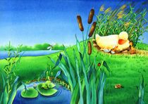 Illustration Duck Egg Nest von Denitza Gruber