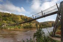Biblins Suspension Bridge von David Tinsley