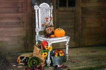 Herbst von Christiane Calmbacher