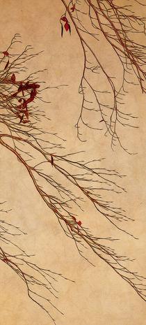 branches von Franziska Rullert