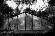 'glasshouse' by Schoo Flemming