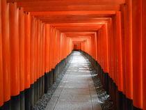 Fushimi Inari #2 by Sergio Cabrera