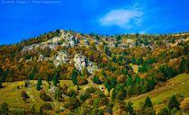 Herbst von Chris Rüfli Photography
