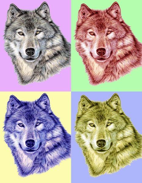Wolf-pop-gross