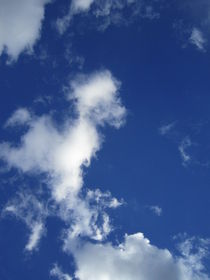 Wolken - Dinosaurier von tola58
