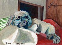 Lucy  von Sarah K Murphy