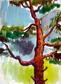 pine-tree by Valeria Matyasch