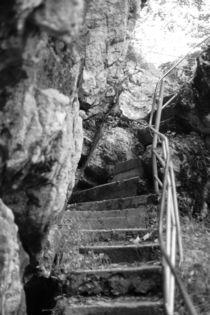 Treppe Tatzelwurm schwarz weiss Fotografie von Kathleen Follert