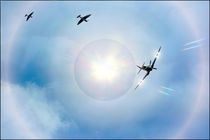 Spitfires by jason green
