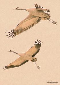Couple-cranes