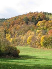 Herbstlicher Wald von Heike Rau