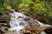 Wasserfall im Herbstwald, Waterfall in Autumn Forest von Sabine Radtke
