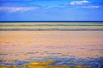 Ostsee by mario-s
