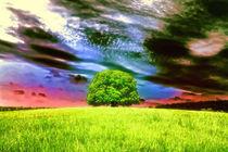Baum von mario-s