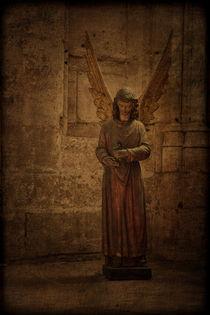 Ein Engel auf Erden by blackbiker