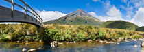 Mount Egmont/Taranaki National Park, New Zealand by Tom Dempsey