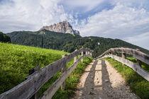 Idyllic path, Selva Gardena/Wolkenstein, Dolomites von Tom Dempsey