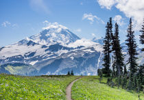 Mount Baker Wilderness, Washington, USA. von Tom Dempsey
