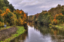 'Herbstlich am Kanal in Bamberg ' by Bamberg Photoart