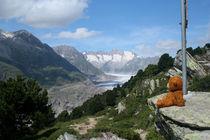 Am Aletschgletscher von Olga Sander