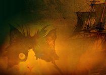 Henry der Piratenkater by Wolfgang Schwerdt