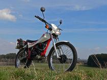 Honda TLR 200 Reflex Trial by Mark Gassner