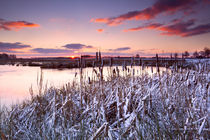 Beautiful winter von Olha Rohulya