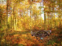 The Woodsman's Glade. von Heather Goodwin