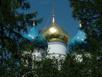 Domes of Trinity Lavra of St. Sergius von Roman Popov